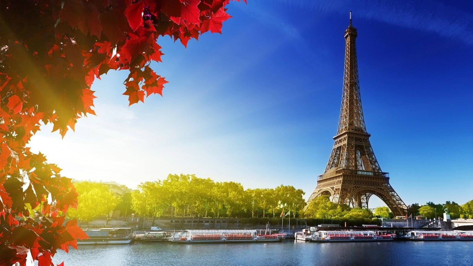 Preciosa instantánea de la Torre Eiffel