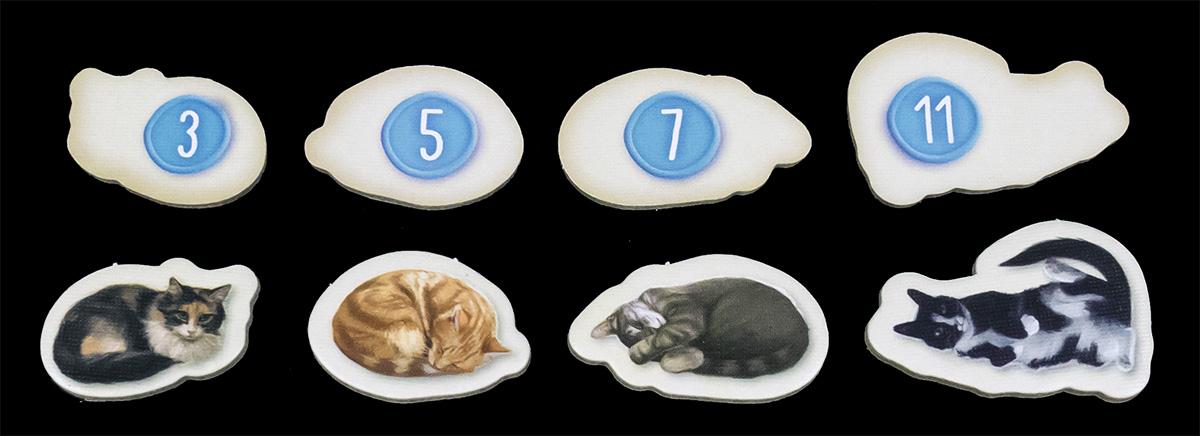 Ficha de Gato